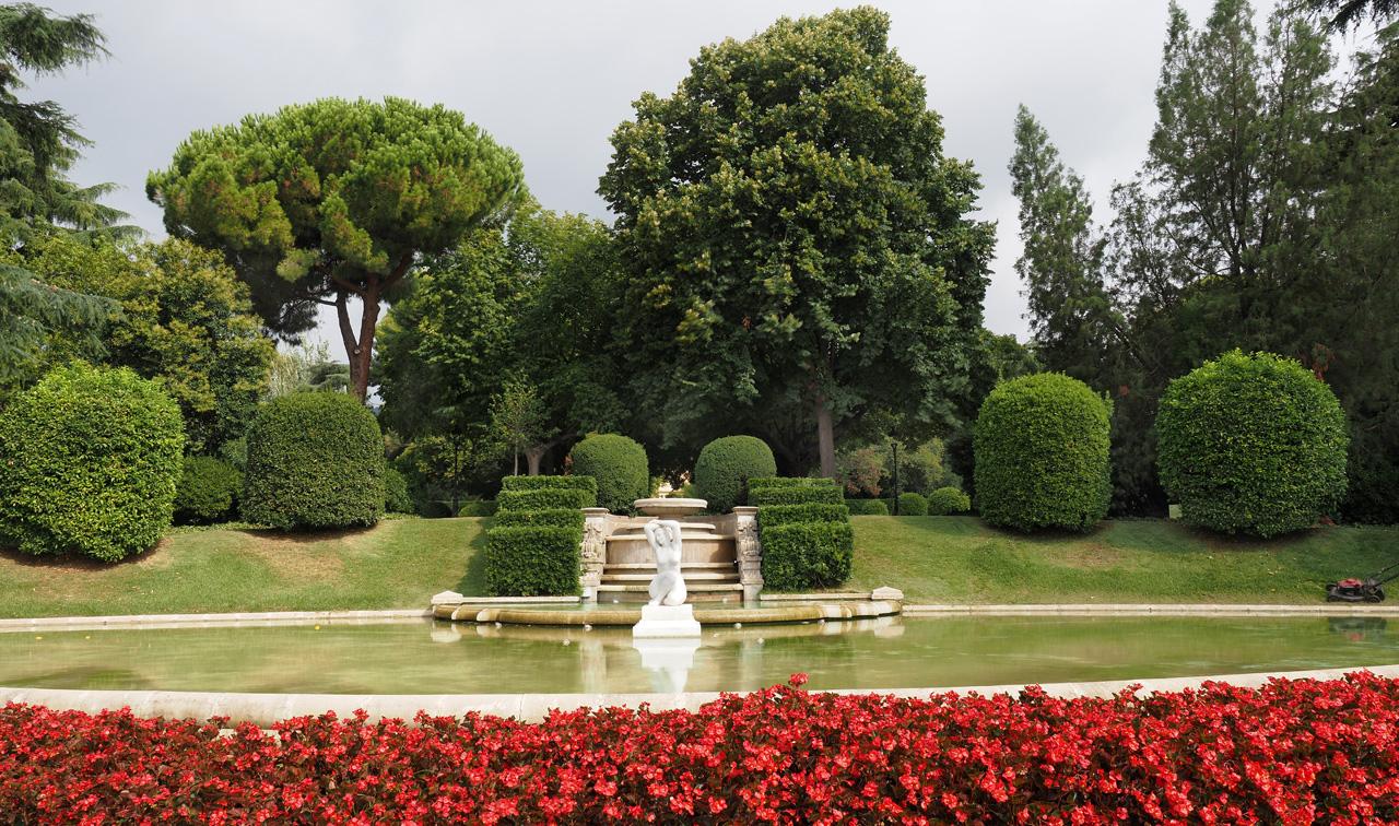 Olympus OM-D E-M1X garden