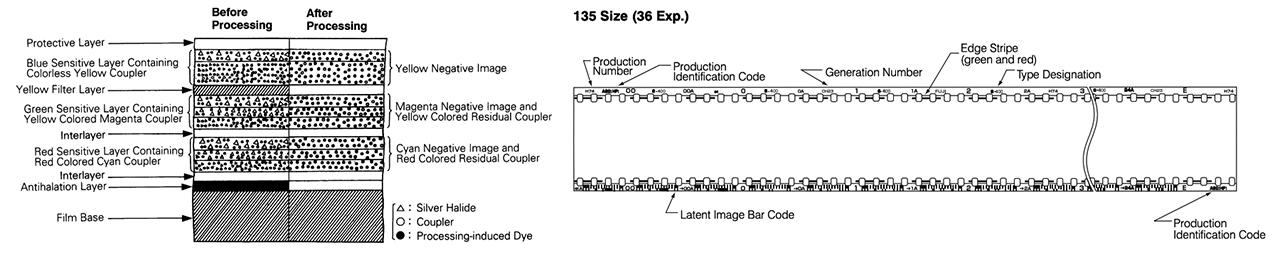 Fujifilm Superia X-Tra 400 Specs